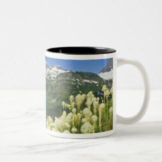 Beargrass near Logan Pass in Gacier National Two-Tone Coffee Mug