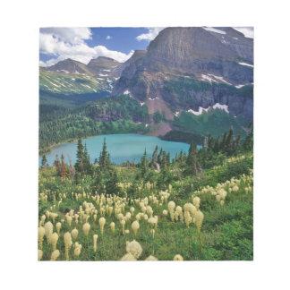 Beargrass sobre el lago Grinnell en el muchos Bloc De Notas