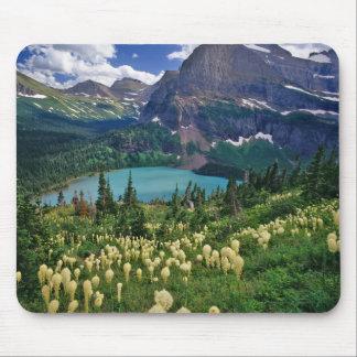 Beargrass sobre el lago Grinnell en el muchos Mousepad