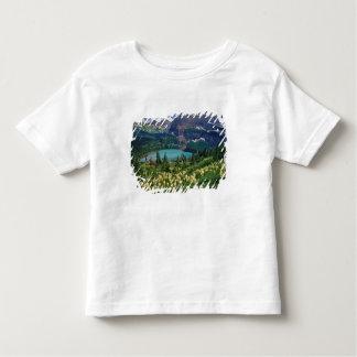 Beargrass sobre el lago Grinnell en el muchos Poleras