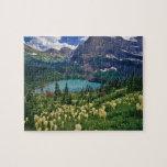 Beargrass sobre el lago Grinnell en el muchos Rompecabezas