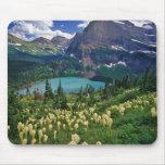 Beargrass sobre el lago Grinnell en el muchos Alfombrillas De Ratón