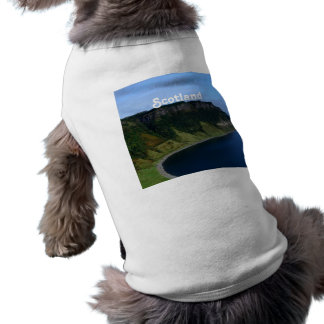 Bearreraig Bay Pet Tee