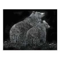 Bears Animal Scratchboard Black and White Art Postcard