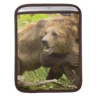 Bears Fighting  iPad Sleeve