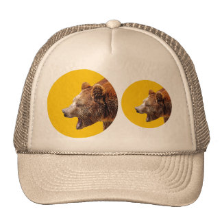 Bears Hats