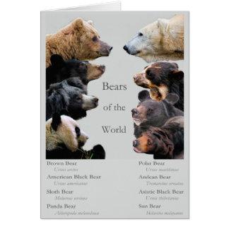 Bears of the World Card