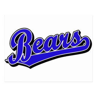 Bears script logo in blue postcard