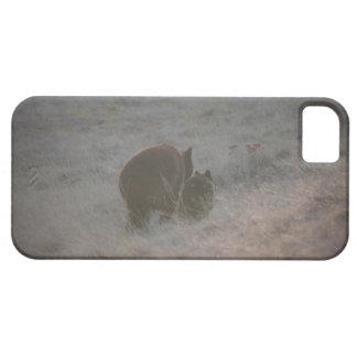 Bears Walking at Sunset iPhone SE/5/5s Case