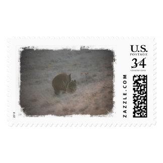 Bears Walking at Sunset Postage