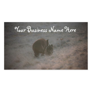 Bears Walking at Sunset; Promotional Double-Sided Standard Business Cards (Pack Of 100)