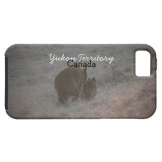 Bears Walking at Sunset; Yukon Territory Souvenir iPhone SE/5/5s Case