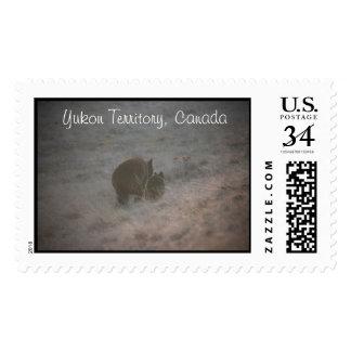 Bears Walking at Sunset; Yukon Territory Souvenir Postage