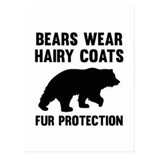 Bears Wear Hairy Coats Fur Protection Postcard