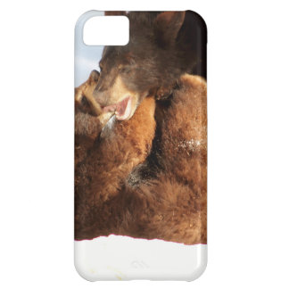 Beary Fun Case For iPhone 5C