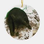 Beary Merry Christmas Ornament