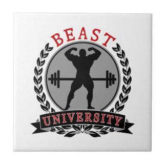 Beast University Bodybuilding Ceramic Tile