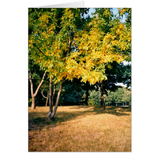 Beatiful Autumn Tree Stationery Note Card