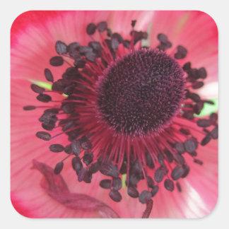 Beatiful Pink Flower Square Sticker