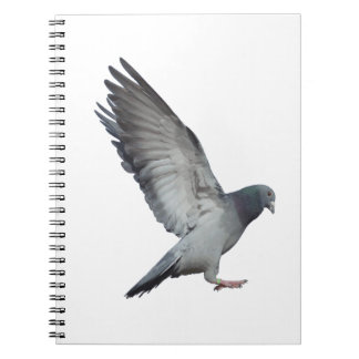 Beating wings spiral notebook