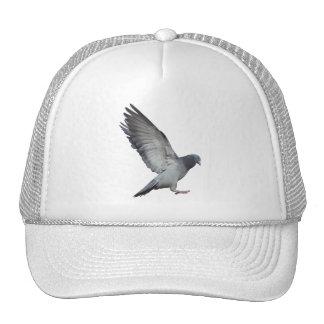 Beating wings trucker hat