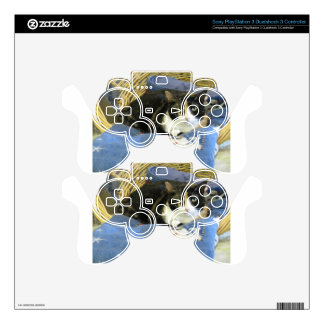 Beatrice PS3 Controller Skin