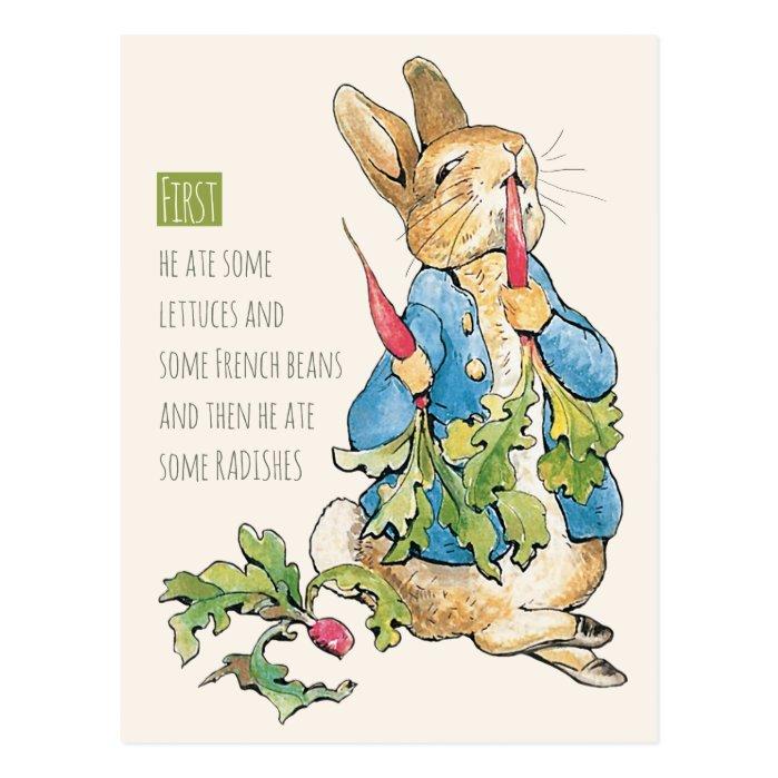 Beatrix Potter Rabbit gorging on radishes CC1115 Postcard