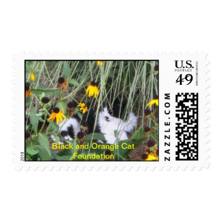 Beau in the flowers stamp
