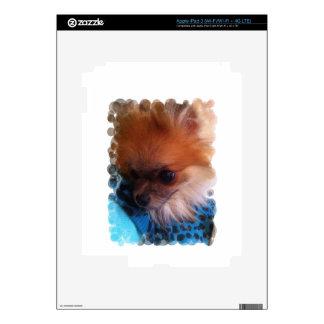 Beau-Nanna napping. iPad 3 Skins