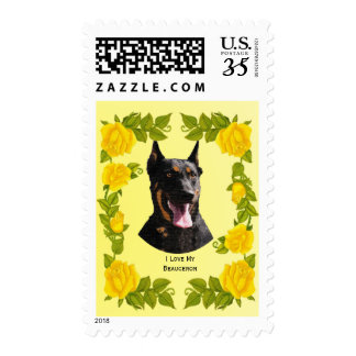 Beauceron and Yellow Roses Postage