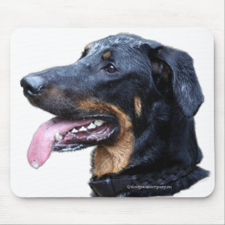 beauceron arlequin mouse pad