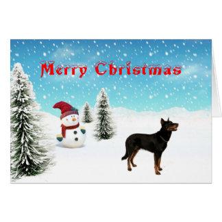 Beauceron Christmas Card