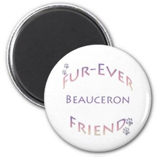Beauceron Furever Magnet