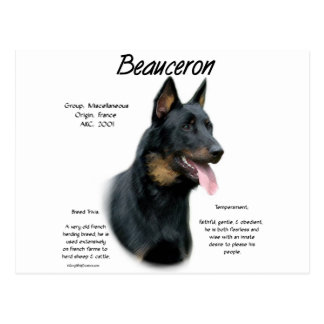 Beauceron History Design Postcards