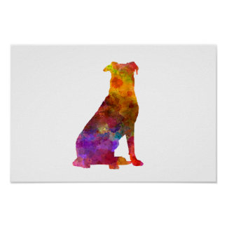 Beauceron in watercolor poster