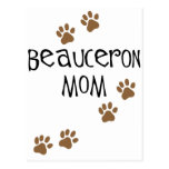 Beauceron Mom Post Cards