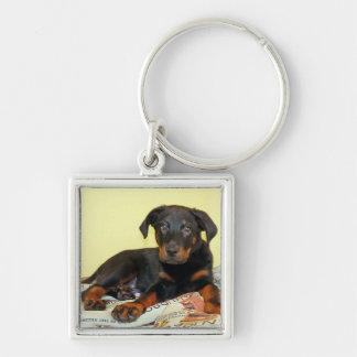 beauceron puppy keychain
