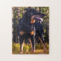 Beauceron Shepherd Dog. Jigsaw Puzzle