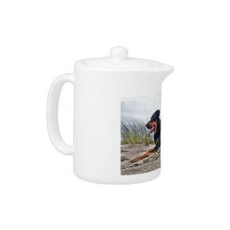 Beauceron Teapot