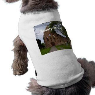 Beauly Priory Dog Shirt