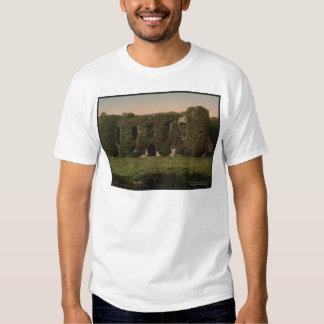 Beaumaris Castle Vintage Photo Wales Shirt