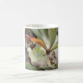 Beauteous Bromeliad Mug