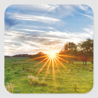 beautif de la puesta del sol de Carolina del Sur Pegatina Cuadrada