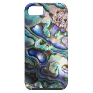 Beautiful abalone shell iPhone 5 cases