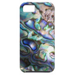 Beautiful abalone shell iPhone 5 cover