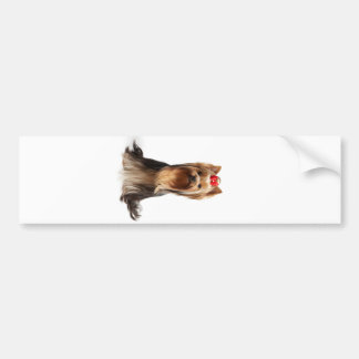 Beautiful adorable dog bumper sticker