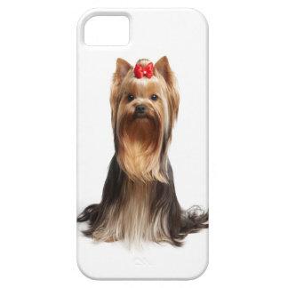Beautiful adorable dog iPhone SE/5/5s case