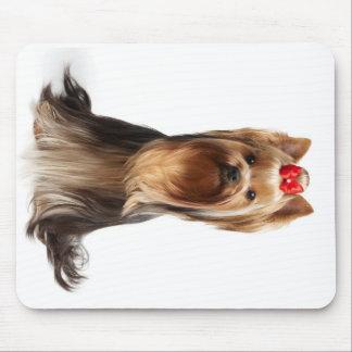 Beautiful adorable dog mouse pad