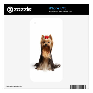 Beautiful adorable dog decals for iPhone 4S