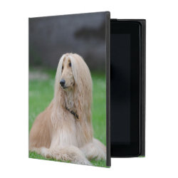 Powis iCase iPad Case with Kickstand with Afghan Hound Phone Cases design